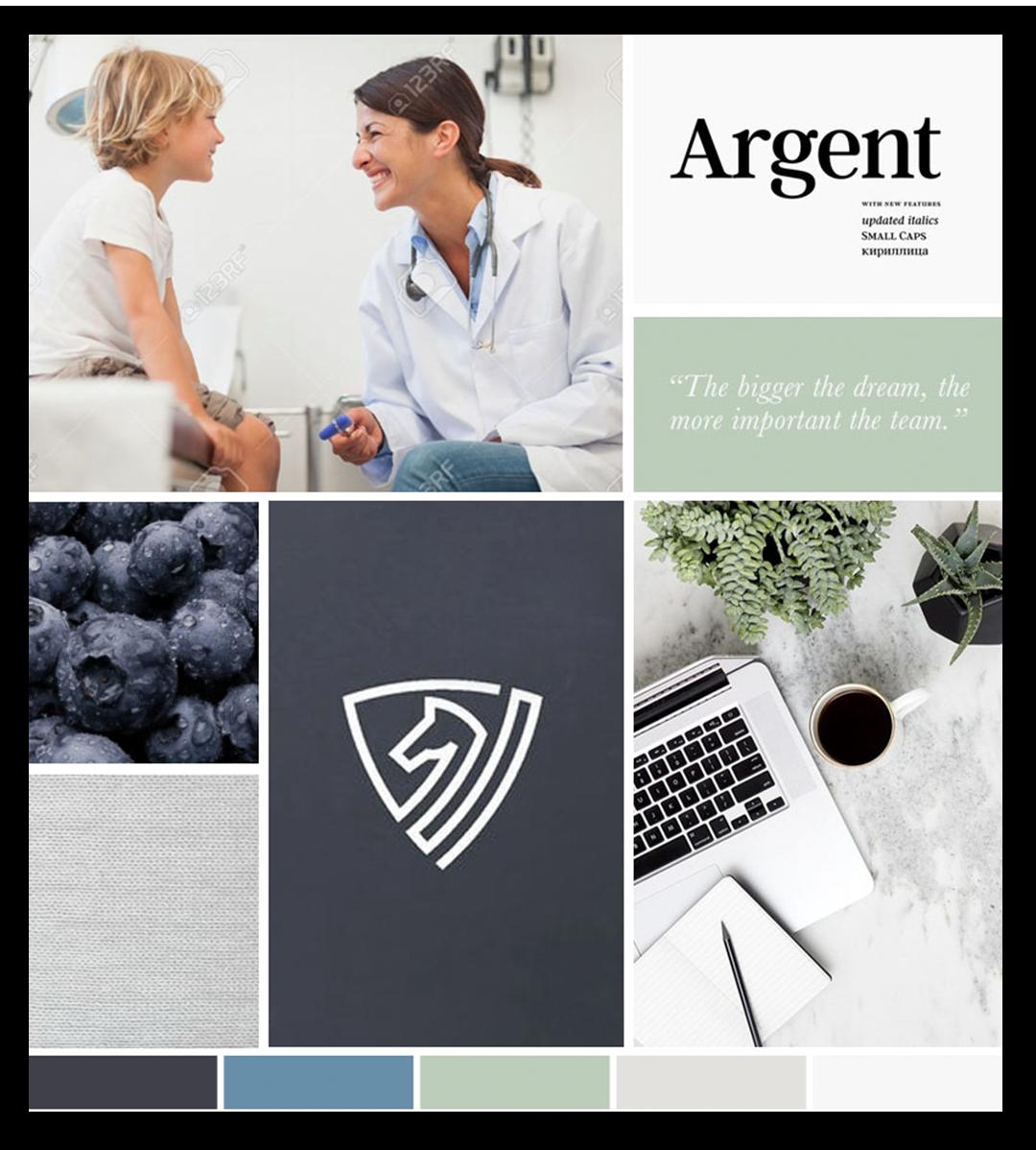Inspiration Board for Port Lane Medical Billings by Ember & Co Design Studio